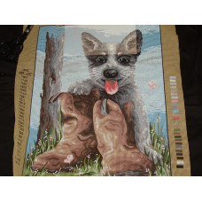 Bluey's Boots