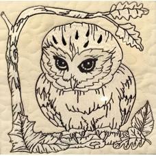 Twilight Owls Club